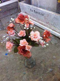 Cementerio de Zapallar, Chile. CGP©2014