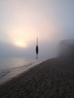 Alluring fog and a lure in fog