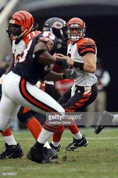 Cincinnati Bengals QB Carson Palmer looks downfield for a receiver as  Chicago Bears DE Adewale Ogunleye 0194c68bc