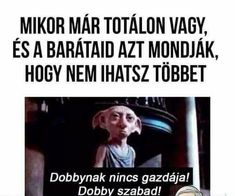 Dobby Really Funny Memes, Stupid Memes, Funny Images, Funny Photos, Funny Fails, Funny Jokes, Harry Potter Memes, I Don T Know, Funny Moments