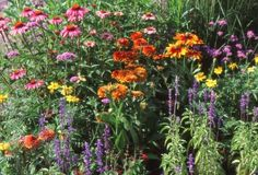 Five simple facts about cottage garden design and ideas on how to do it yourself