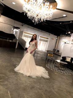 33 Best Vivienne Atelier Los Angeles Bridal Shop For Wedding Dress
