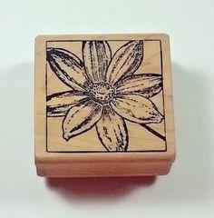 Magenta MARIGOLD SQUARE 19013I Wood Mount Rubber Stamp Flower  #Magenta #Background