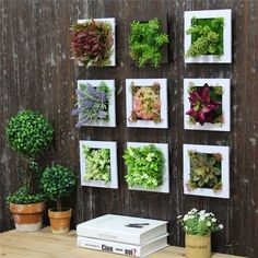 wall Plants Frame - Simulation Flower Frame Artificial Plant Wall Decor Home Garden Wall Hanging. Plant Wall Decor, Frame Wall Decor, Frames On Wall, Diy Wall, Garden Wall Decorations, Patio Wall Decor, Green Wall Decor, Outdoor Wall Art, Display Wall