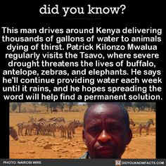 Hero This man drives around Kenya delivering thousands of gallons of water to animals dying of thirst. Patrick Kilonzo Mwalua regularly visits the Tsavo, where severe drought threatens the lives of buffalo, antelope, zebras, and elephants. He says he'll continue providing water each week until it rains, and he hopes spreading the word will help find a permanent solution photography
