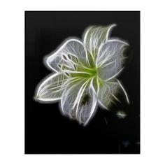 White lily flower acrylic wall art  $113.94  by PastPresenceArt  - custom gift idea