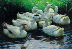 ALEXANDER KOESTER 1864-1932 Ans Ufer (Enten) To the Shore (Ducks)  oil on canvas signed 'A KOESTER' lower right 70 x 106 cm