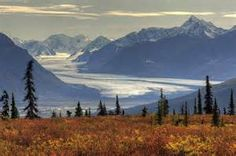 Nelchina Alaska - Population 59 (2014) - Nelchina (Xaz Ghae Na' in Ahtna) is a census-designated place (CDP) in Valdez-Cordova Census Area, Alaska, United States. The population was 59 at the 2010 census.