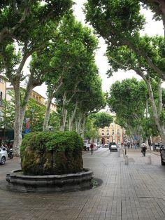 ✮ Plane Alley - Aix en Provence, France
