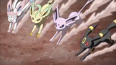 Pokemon Sun and Moon Eevee Z Move Extreme Evo Boost Pokemon Manga, Pokemon Gif, Pokemon Party, Play Pokemon, Cool Pokemon, Pokemon Tv Show, First Pokemon, Pokemon Special, Eevee Evolutions