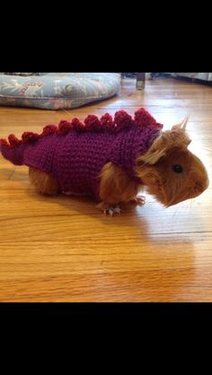 dragon piggy