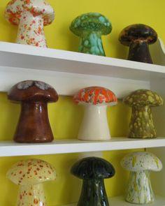 Mushroom Collection!