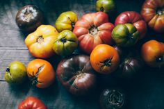 Tennessee heirloom tomatoes | photo by Hannah Messinger