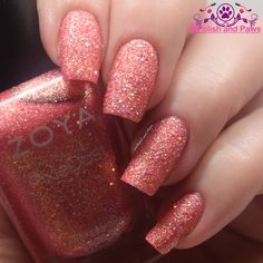 Polish and Paws: Zoya Seashells Collection ~ Summer 2016