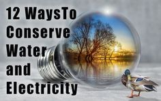 These 12 methods to conserve water and electricity, even in an apartment, will save you money and make your life more sustainable.