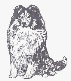 "Dog Rubber Stamp - Shetland Sheepdog-1E (Size: 1-3/4"" Wide X 2-1/4"" Tall) *** Visit the image link more details."