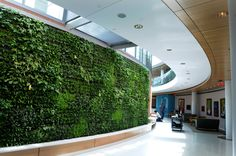 ann b barshinger cancer institute - Google Search