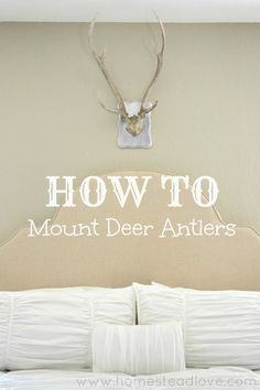 HOW TO Mount Deer Antlers. Stylish, quick and easy! https://www.facebook.com/groups/USABuySellTradeWantedFreeI/