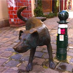 The Zinneke dog (means bastard in Brussels dialect), symbol of Brussels ' diversity #statue #brussels #zinneke