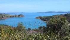 Waiheke is an island suburb of Auckland and is the second largest island in the Hauraki Gulf and only 35 minutes from. Journey Quotes, Lyon France, France Europe, Europe Photos, Travel Articles, Best Cities, Auckland, Japan Travel, Wonderful Places