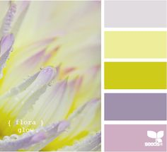 flora glow - design seeds  Already using the pale gray, pale yellow and yellow-green.  I know just where to use the other colors, as well!