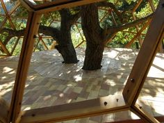 incorporating the trees with the design & structure