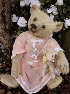 "A gorgeous, humpbacked Steiff teddy with earbutton c.1908, Nixie is 46 cms (18"") tall and has faded apricot mohair, which can just about be glimpsed deep inside her ears. She has original boot button eyes, and a black-stitched nose and mouth, along with a non-working tilt growler."