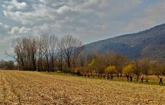 #nordic #walking #tour #revinelago #treviso #veneto #italy