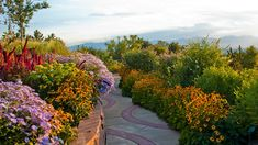 Red Butte Garden, 100 acres on eastern edge of University of Utah- 21 acres of developed gardens. in SLC, Utah Hillside Garden, University Of Utah, Salt Lake City Utah, World Cities, City Landscape, Love Flowers, Garden Inspiration, Cool Places To Visit, View Photos