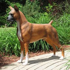 Boxer on Pinterest   Boxer Dogs, Boxers and Boxer Dog Tattoo