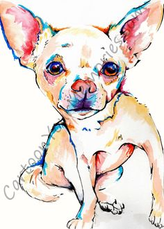 Chihuahua Dogs Chihuahua watercolor print - This is a print of an original watercolor I painted. It will not come with my watermark. It is printed on glossy photo paper for the best quality and color. Chihuahua Tattoo, Chihuahua Art, I Love Dogs, Cute Dogs, Little Dogs, Watercolor Print, Dog Art, Dog Life, Best Dogs