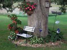 backyard landscaping around large trees | Flowers around a big oak tree.