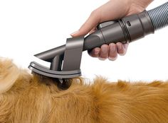 Grooming a dog, especially a long-haired dog, can end up costing a small fortune and take a lot of time. Here are 10 products that can help save you time, money, or both! #1 - Dyson Groom Tool  If you have a Dyson Vacuum and a medium to long-haired dog, than you need this attachment. It brushes and then sucks the loose hair right off your dog. Saves you time since you won't have to pick up all that dog hair after brushing, and there will be less falling around the house.