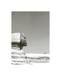 Sphinx Buggy Photograph
