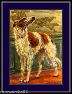 Antique Dog Paintings For Sale | Used Vintage Print Russian Wolfhound Borzoi Dog Art Picture for Sale ...