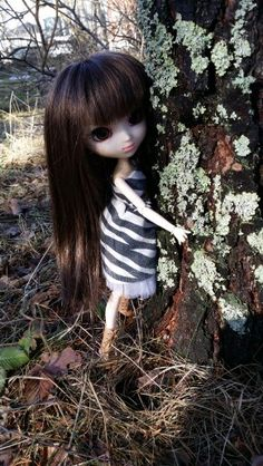 My pullipdoll, Fumi ♡ Hug at tree c': I can't write english very well :'D