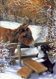gif animals - Page 4 Animals And Pets, Baby Animals, Funny Animals, Cute Animals, Christmas Scenes, Christmas Animals, Animal Pictures, Cute Pictures, Foto Gif