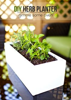 DIY Herb Planter, some tools required ;) home decor, grow your own herbs