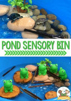Frog Sensory Bin for Preschool. This hands-on sensory bin is perfect for a pond theme in your or classroom! A fun frog sensory bin your little learners will love! Perfect for a pond theme sensory play experience in your preschool or pre-k classroom. Toddler Learning, Toddler Fun, Preschool Learning, Toddler Activities, Sensory Activities Preschool, Teaching, Kindergarten Sensory, Motor Activities, Early Learning