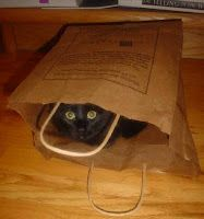 Just don't let the cat out of the bag.  http://kniceknitties.blogspot.com/