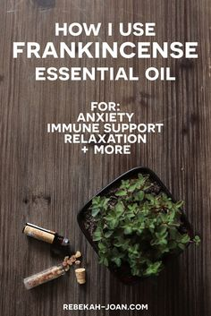 How I Use Frankincense Essential Oil for Anxiety + Immune Support + Relaxation + More - Frankincense Essential Oil Benefits - Frankincense Essential Oil has many uses, from skin care to helping with mental health. Read this post to find out what frankince Essential Oils For Anxiety, Natural Essential Oils, Essential Oil Blends, Natural Oils, Natural Health, Frankincense Essential Oil Benefits, Frankincense Essential Oil Uses, Frankincense Oil, Natural Home Remedies