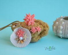 Handmade succulents #seashell #scallop #necklace #earrings #ring #seastar