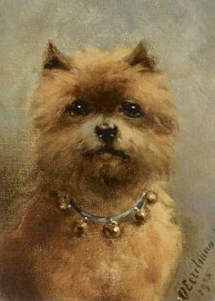 A Griffon Bruxellois - Otto Eerelman Dog And Cat Images, Dog Artwork, Brussels Griffon, Dutch Artists, Old Dogs, Dog Portraits, Animal Paintings, Dog Pictures, Pet Birds