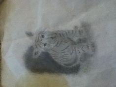 Tiger cub!!!