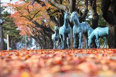 秋の官庁街通り