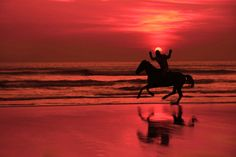 silhouette of lone horse and rider with arms in the air with joy on a beach in Ireland