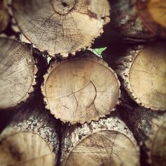 Firewood #Instagram