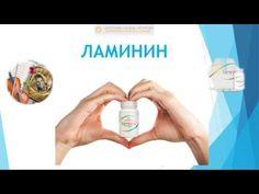 T. Huft Los Angeles CA USA, Lamiderm Apex and Laminine LPGN = Health and Money - YouTube
