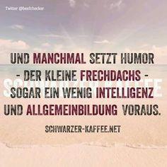 Und manchmal setzt Humor - der kleine Frechdachs - sogar ein wenig Intelligenz und Allgemeinbildung voraus. Sprüche, Spruch, lustig