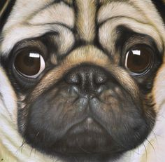 Pug Portrait (I want this, but as a black pug like Cooper)